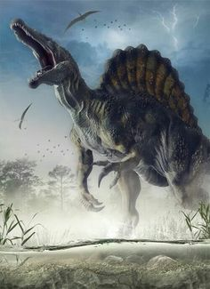 Spinosaurus is the largest of all known carnivorous dinosaurs, larger than Tyrannosaurus and Giganotosaurus. Estimates published in 2005 and 2007 suggest that it was 12.6 to 18 metres (41 to 59 ft) in length and 7 to 20.9 tonnes (7.7 to 23.0 short tons) in weight.