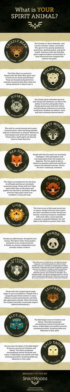 What is your spirit animal? Mine is Grey Wolf - 9GAG