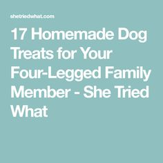 17 Homemade Dog Treats for Your Four-Legged Family Member - She Tried What