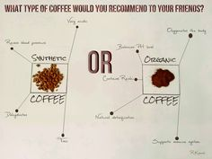 What type of coffee would you recommend to your friends? Diary of my networking (blog) - Koncal Robert 's site