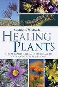 Steiner - Body, Mind, Health & Healing: Anthroposophic Medicine