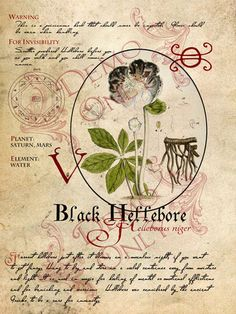Black Hellebore page for the BOS prop in the works.
