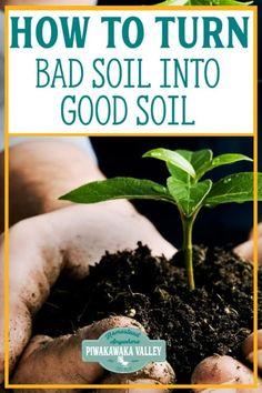 Vegetable Gardening Design Garden Soil Preparation: How to Turn Bad Soil into Good Soil - Pīwakawaka Valley Homestead