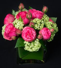 This is a cube vase floral arrangement that features hot pink garden roses and green viburnum. See our entire selection at www.starflor.com.  To purchase any of our floral selections, as gifts or décor, please call us at 800.520.8999 or visit our e-commerce portal at www.Starbrightnyc.com. This composition of flowers is generally available for same day delivery in New York City (NYC).  SQ322