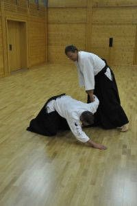Aikidotraining in Wels: Budokan Wels. Sommertraining August 2014 ohne Tatami. Tantodori - Einleitung Fixierung