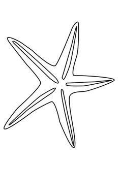 Malvorlage Seestern   Ausmalbild 27185.