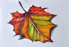 Hey, I found this really awesome Etsy listing at https://www.etsy.com/listing/219290481/original-colored-pencil-drawing-autumn