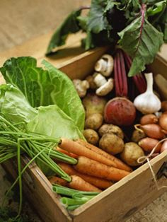 You don't have to live with a dirt-floor cellar to take advantage of stocking up on fresh vegetables and fruits during harvest (when prices are cheap). All you need is a cool, dark place that won't freeze; it could be under a stairwell, or in a corner of a basement, garage or shed.