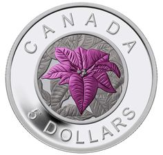 Fine Silver Coin with Niobium Colouring - Flowers in Canada Series - Poinsettia Poinsettia, Bullion Coins, Silver Bullion, Mint Coins, Silver Coins, Canadian Things, Coins For Sale, Commemorative Coins, World Coins