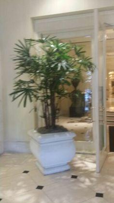 #Cococscollections Ritz Carlton lobby
