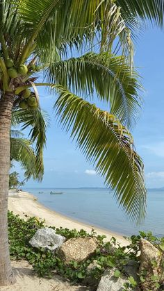 Exotic Beaches, Tropical Beaches, Beautiful Ocean, Beautiful Beaches, Beach Captions, Beach Quilt, Bay Of Islands, Ocean Sounds, Relaxing Day