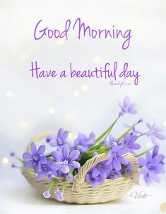 2676 Best Good Morning Greetings Images In 2019 Good Morning Good