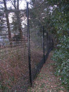 Deer Fencing - The Benner Deer Fence Company Deer Fence, Farm Fence, Fence Gate, Veg Garden, Garden Fencing, Garden Pests, Deer Netting, Different Types Of Fences, Deer Farm