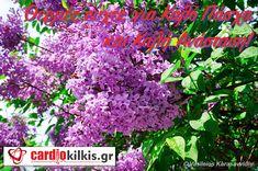 ΒΑΣΙΛΕΙΟΣ ΚΑΡΑΣΑΒΒΙΔΗΣ: Πασχαλινές ευχές από καρδιάς Herbs, Plants, Blog, Herb, Blogging, Plant, Planets, Medicinal Plants