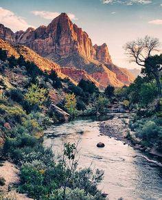 "Wilderness Culture on Instagram: ""Golden hour in Zion National Park #Utah Photo: @vjamesphoto #wildernessculture"""