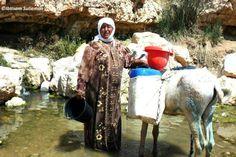 Palestinian hard life