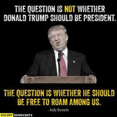 The question is NOT whether Donald Trump should be president. The question IS whether he should be free to roam among us. Caricatures, Funny Political Memes, Donald Trump Images, Debate Memes, Funny Quotes, Funny Memes, Funniest Memes, That Way, Just In Case
