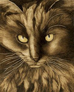 """Black Cat"" burned on paper with accents in the eyes. Artwork has sold."