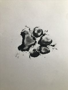 - ideen hund 57 Best Dog Tattoo Designs Art Print: Dog Fingerprint by zothen : 14 Beautiful Paw Print Tattoos That Might Just Convince You to Get Inked Skull Tatto, Neck Tatto, Temporary Tattoo Sleeves, Custom Temporary Tattoos, Wolf Paw Tattoos, Paw Print Tattoos, Tattoo Wolf, Tattoo Cat, Dragons Tattoo