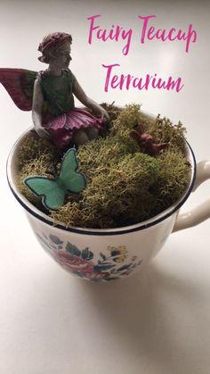 Fairy Teacup Terrarium