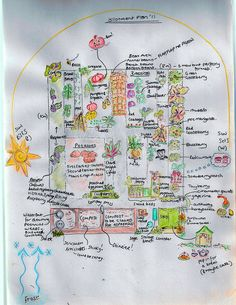 Garden plan art.  How cute!