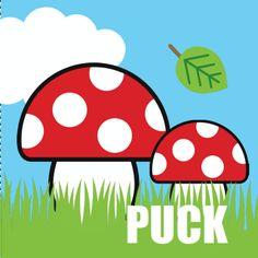 Een kleurig geboortekaartje voor een zoon met daarop paddenstoelen in het gras met een wolken print.