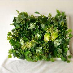 育てる必要なし!フェイクグリーンで憧れの植物インテリアを始めよう!! ページ1 | CRASIA(クラシア)
