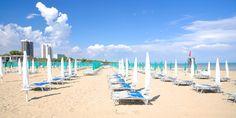 Die Sonnenplätze stehen bereits © Shutterstock.com