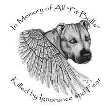 """** In Loving Memory **    Of all the amazing pit bulls... who are gone to soon due to ignorance and fear.    Click """"like"""" to show some love"""