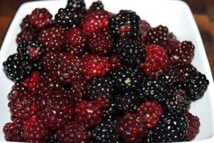 blackberry Forest Fruits, Blackberry, Food, Essen, Blackberries, Meals, Yemek, Rich Brunette, Eten