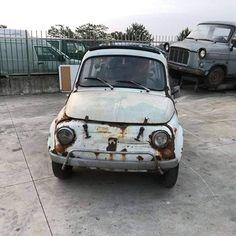 Fiat500nelmondo (@fiat500nelmondo) • Foto e video di Instagram Fiat 500, Video, Car, Pictures, Artist, Instagram, Photos, Automobile, Artists