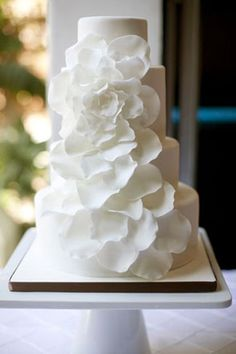 all white simple cake with one large flower. Inspired by wedding dress?
