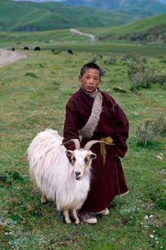 Tibetan shepherd boy with goat