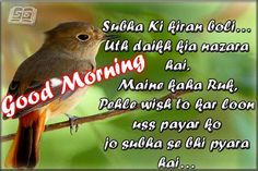 Subha Ki Kiran boli,Subha ki kiran boli,Uth Daikh Kia Nazara hai,Maine Kha Ruk,Good morning SMS 2015,Latest SMS,Good morning images Phele Wish to Kar loo