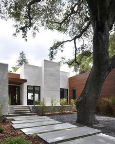 Menlo Oaks Residence,© Dasja Dolan