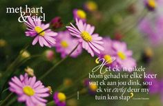 Met hart en siel Afrikaans Quotes, Printable Quotes, Christian Quotes, Bible, Wisdom, Motivation, Sayings, Words, Printables