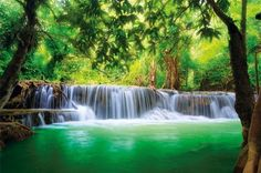 Paradise Photo Wall Paper - Waterfall in the Jungle - Jungle River ...