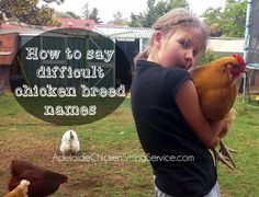 How to pronounce tricky chicken breed names and sound like a poultry pro!