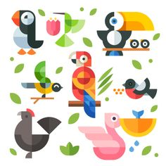 Magic birds - Beresnev Design, flat icon and illustration