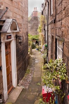 """""""Yet another narrow alley"""" Robin Hood's Bay, North Yorkshire (©Dave John / Pictures Of England)"""