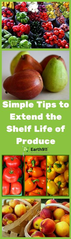 Extend the shelf life of produce with these simple tips. Produce storage can be tricky, no one wants to end up with a bag of rotten apples. Use these tips to keep your fruits and vegetables fresh and tasty.