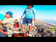 supervivencia en la orilla  del mar