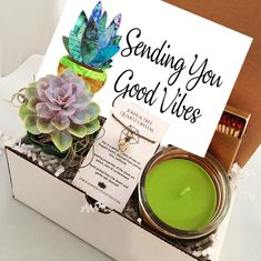 Sending You Good Vibes - Succulent gift box - cactus gift - Send A Gift - birthday present- friend gift get well soon - cheer up gift box Cactus Gifts, Succulent Gifts, Cheer Up Gifts, Gifts For Friends, Friend Gifts, Coworker Birthday Gifts, Birthday Box, Birthday Crafts, Wine Gift Baskets