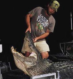 Photos of Massive South Carolina Gator Taken by Hunter in Santee Lake
