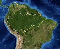 Rio+20: Salvem as Florestas Temperadas