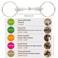 Riding horse and pony with full olive stainless steel FOUGANZA, … Mors équitation cheval et poney à olive plein en inox FOUGANZA, - Art Of Equitation Bits For Horses, Types Of Horses, Horse Barn Plans, Horse Facts, Pony Rides, Pony Horse, Baby Horses, Horse Tips, Equestrian Style