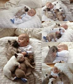 Adorable puppies sleeping with a little baby.. Click the pic for more aww