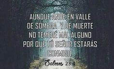 Aunque ande en valle de sombra y de muerte no temeré mal alguno porque tu Señor estarás conmigo. Sal 23.4