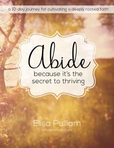 """Are you're wishing you knew how to get closer to God, but can't seem figure out what you're supposed to do to tear down the invisible wall? """"Abide: Because It's the Secret to Thriving"""" will guide you in discovering how to connect with God in authentic, life-transforming way."""