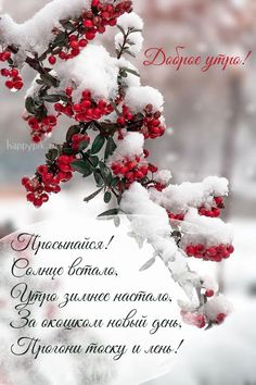 Photography Winter Scenery Ideas For 2019 Christmas Puppy, Christmas Mood, Christmas Movies, Merry Christmas, Winter Photography, Amazing Photography, Woods Photography, Christmas Aesthetic Wallpaper, Winter Scenery